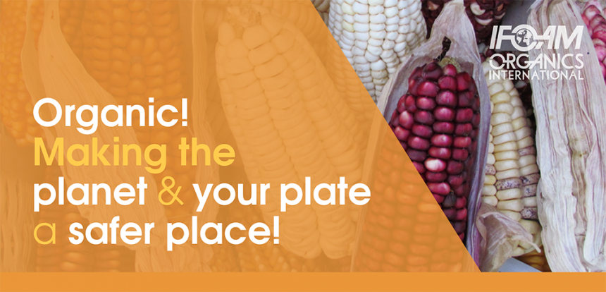 Organic! Making the planet and your plate a safer place!