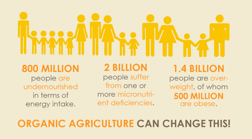 Food Security by the Numbers