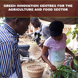 Green Innovation Centres For the Agriculture and Food Sector