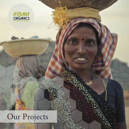 Our Projects Brochure