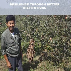 Resilience Through Better Institutions