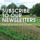 Subscribe to our Newsletters: keep up-to-date on organic.