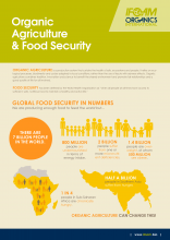 Organic Agriculture & Food Security Fact Sheet